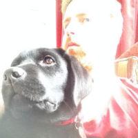 Joe-dog-profile