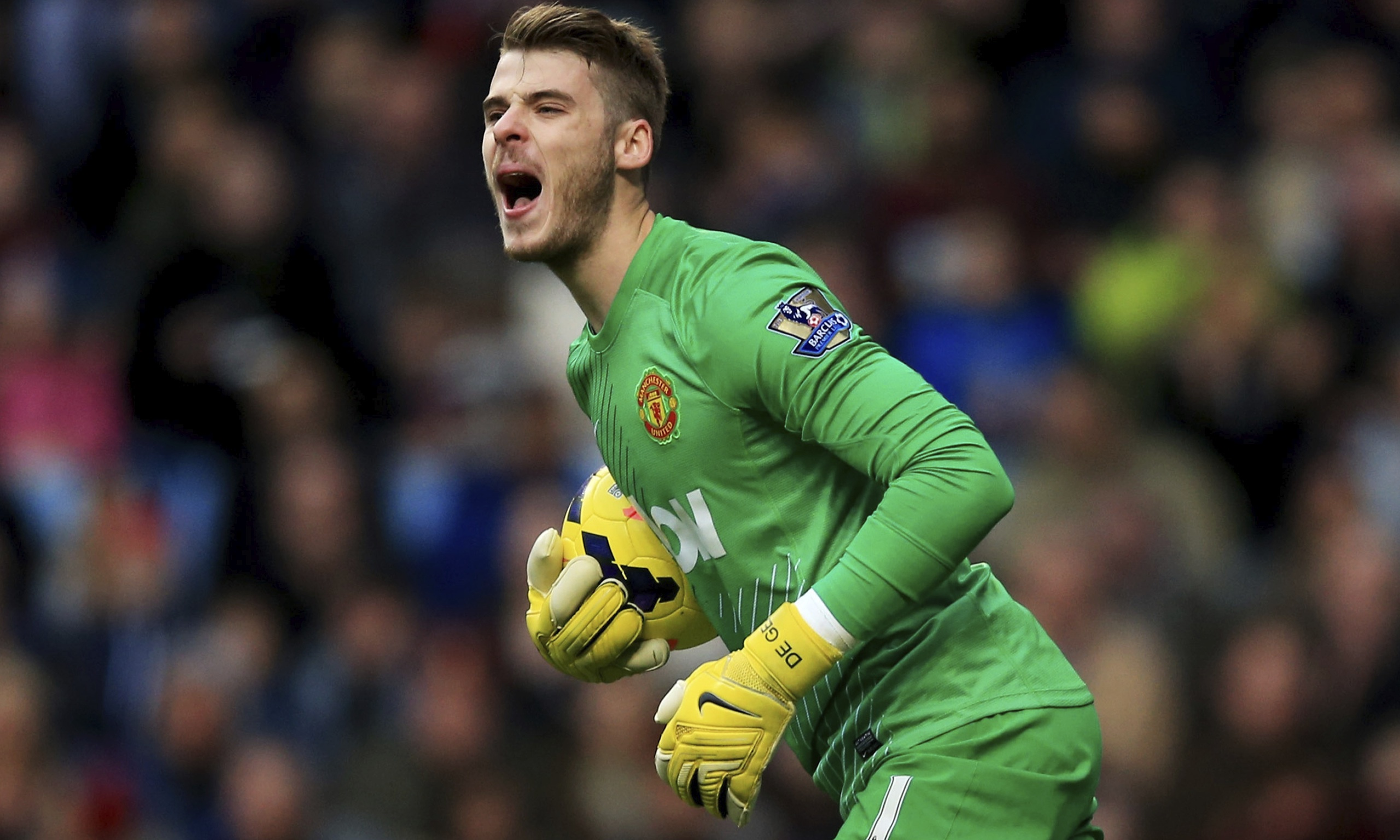 David de Gea has reached new heights this season